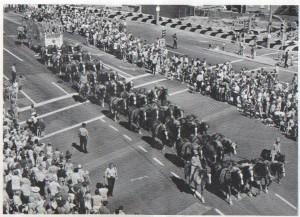 40_Horse_Hitch_pasadena -rose parade-feb 1974