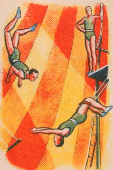 Monte Carlo Festival Circus